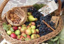 Gli antichi frutti d'Italia