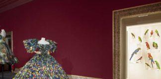 Dolce & Gabbana, Abito, Rinascimento Collection, Fall/Winter 2018-19 Alta Moda © Antonio Quattrone - Mostra Animalia Fashion