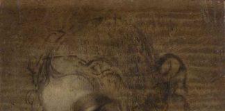 Leonardo da Vinci, Scapiliata - Foto di Lorenzo Moreni