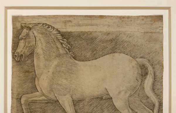 Ambito di Giovanni Antonio da Brescia (da Leonardo da Vinci) Cavallo al passo anni Novanta del XV secolo Incisione a bulino, 144 × 159 mm (foglio) Milano, Veneranda Biblioteca Ambrosiana, Pinacoteca - Mostra Intorno a Leonardo