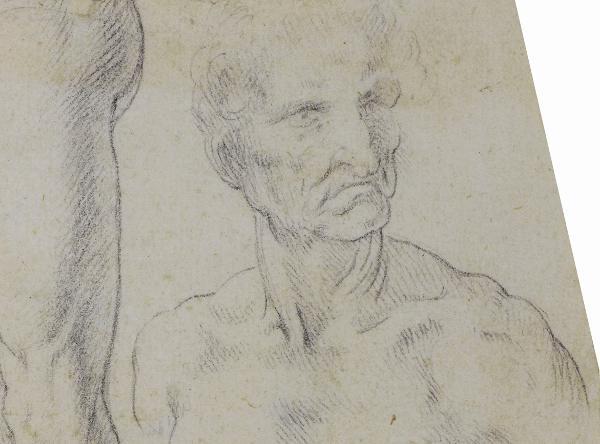 Figura di vecchio (particolare dell'opera Studi anatomici), 1510-1513 ca., disegno a penna su traccia a matita rossa, © Comune di Milano – tutti i diritti riservati – Castello Sforzesco, Gabinetto dei Disegni
